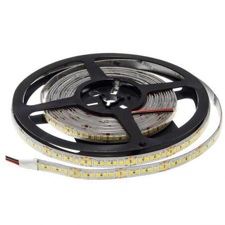 Striscia LED 2835 24V...
